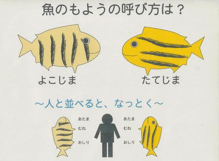 kagokaki04.jpg